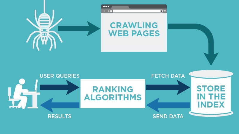 Process used by search engines in ranking web pages.